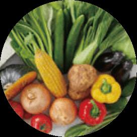 地元芦別産 新鮮野菜