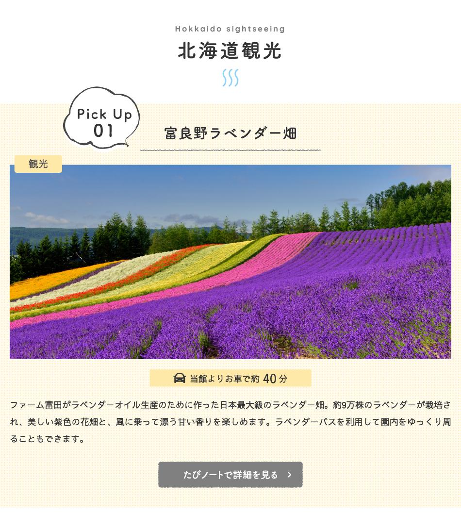 北海道観光・富良野ラベンダー畑